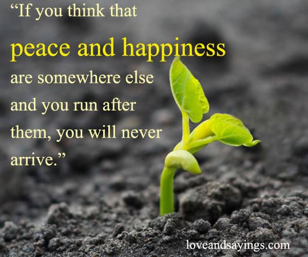 Peace And Joy Quotes: If You Think That Peace And Happiness