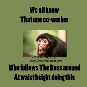Who follows the boss